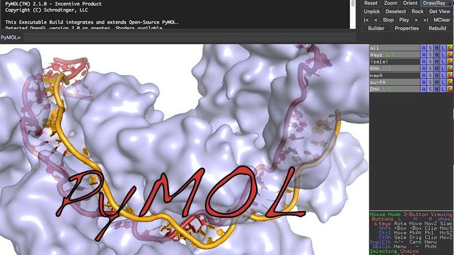CRISPR RNA-guided surveillnace complex, Cascade, bound to a ssDNA target. (PDB ID 4QYZ)