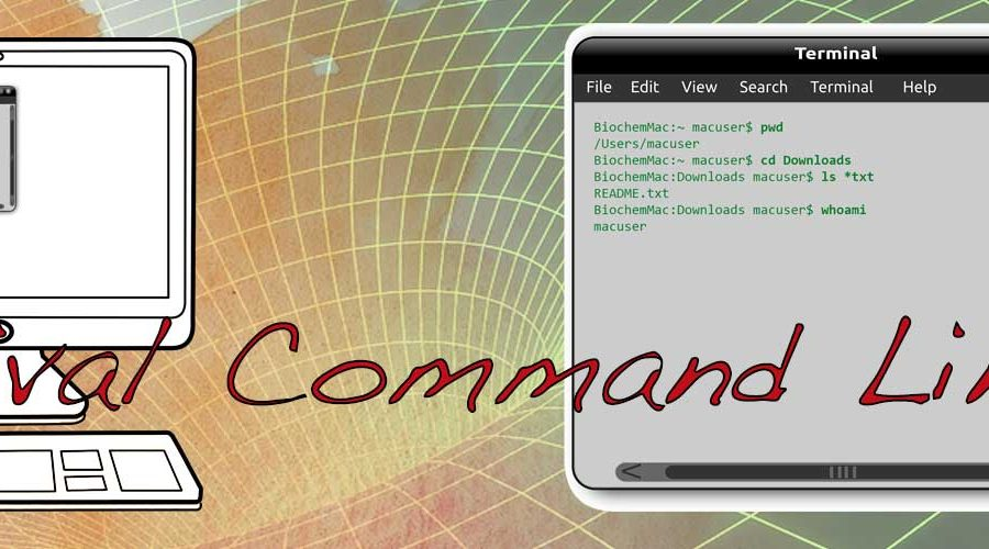 Suvival Command Line