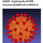 Booklet Cover PyMOL COVID-19 v1.0